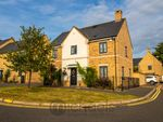 Thumbnail for sale in Brigade Grove, Colchester