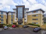 Thumbnail to rent in Percy Green Place, Huntingdon