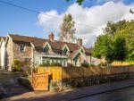 Thumbnail to rent in Sedbury, Chepstow