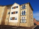 Thumbnail to rent in Torridon Drive, Hampton Centre, Peterborough