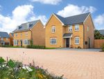 "Thumbnail for sale in ""Camberley"" at Livingstone Road, Corby"