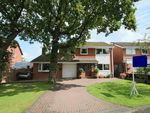 Thumbnail to rent in Central Drive, Penwortham, Preston