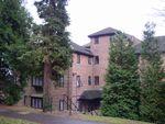 Thumbnail to rent in Twycross Road, Godalmnig