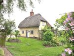 Thumbnail to rent in Shalford, Braintree, Essex