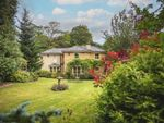 Thumbnail for sale in South Lodge, Wingfield Road, Alfreton, Derbyshire