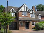 Thumbnail for sale in Birch Grove, Felbridge, East Grinstead