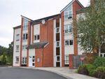 Thumbnail to rent in Palatine Place, Dunston, Gateshead.