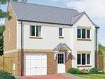 "Thumbnail to rent in ""The Whithorn"" at Dunlop Road, Stewarton, Kilmarnock"