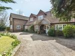 Thumbnail for sale in Pashley Road, Ticehurst, Wadhurst