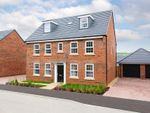 """Thumbnail to rent in """"Buckingham"""" at Snowley Park, Whittlesey, Peterborough"""