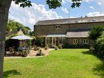 Thumbnail to rent in Priory Gardens, Chesterton, Peterborough