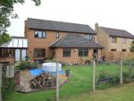 Thumbnail to rent in The Grove, Whittlesey, Peterborough