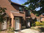 Thumbnail to rent in Primrose Way, Seaton