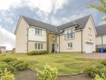 Thumbnail for sale in Macgregor Place, Falkirk
