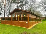 Thumbnail for sale in Uptopia Super Lodge, Plas Coch Holiday Home Park, Anglesey