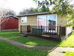 Thumbnail to rent in Seaton Down Road, Seaton, Devon
