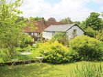 Thumbnail for sale in Bramdean, Alresford, Hampshire