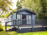 Thumbnail for sale in Oakdene Forset Park, Shorefield, Milford On Sea
