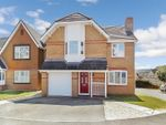Thumbnail to rent in Llys Teg, Broadlands, Bridgend.