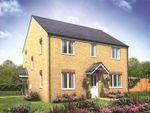 Thumbnail to rent in Plot 258 Millers Field, Manor Park, Sprowston, Norfolk