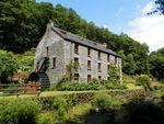 Thumbnail for sale in Godremamog Mill Cwm Cych, Newcastle Emlyn, Carmarthenshire.