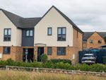 Thumbnail to rent in Harper Crescent, Gunthorpe, Peterborough