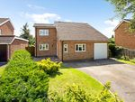 Thumbnail for sale in Beech Close, Winchester, Hampshire