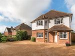 Thumbnail for sale in Haslemere Road, Fernhurst, Haslemere, West Sussex