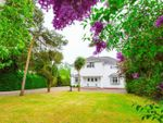 Thumbnail for sale in Romany Road, Lowestoft