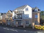 Thumbnail to rent in Plot 11, Whitefield Road, New Milton, Hampshire