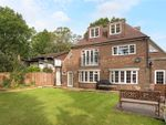 Thumbnail for sale in Alma Lane, Farnham, Surrey