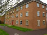 Thumbnail to rent in Tarpan Walk, Westbury, Wiltshire