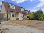 Thumbnail for sale in Grafton Avenue, Bognor Regis, West Sussex