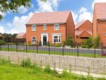 """Thumbnail to rent in """"Bradgate"""" at Lowfield Road, Anlaby, Hull"""