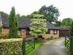 Thumbnail for sale in Bretby Road, Linacre Woods, Chesterfield