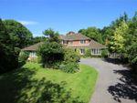 Thumbnail for sale in Soldridge, Medstead, Alton, Hampshire