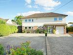 Thumbnail for sale in Hatfield Broad Oak, Bishop's Stortford, Essex