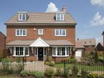 "Thumbnail to rent in ""Stratford"" at Blackthorn Crescent, Brixworth, Northampton"
