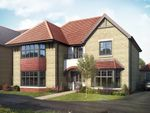 "Thumbnail to rent in ""The Westcott"" at Lady Lane, Blunsdon, Swindon"