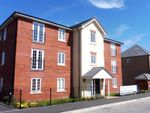 Thumbnail to rent in Buttermere Crescent, Doncaster