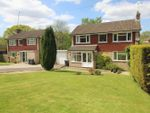 Thumbnail to rent in Milton Crescent, East Grinstead