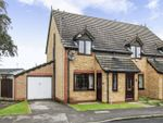 Thumbnail to rent in Holly Croft Grove, Tickhill, Doncaster