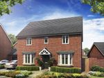 """Thumbnail to rent in """"Bradgate"""" at Barnhorn Road, Bexhill-On-Sea"""