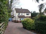 Thumbnail to rent in Green Lane, Farnham