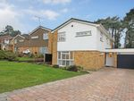 Thumbnail for sale in Pinehurst, Burgess Hill, West Sussex, UK