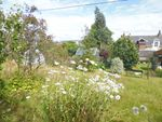 Thumbnail for sale in Land To Rear Of Hazelcliffe, 63, Ardbeg Road, Rothesay, Isle Of Bute