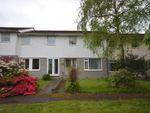 Thumbnail to rent in Maes Yr Efail, Penrhyncoch, Aberystwyth