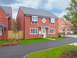 """Thumbnail to rent in """"Thornbury"""" at Bay Court, Beverley"""