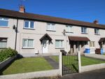 Thumbnail to rent in Hillview Park, Lisburn