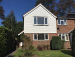 Thumbnail to rent in Ladywell Prospect, Sawbridgeworth